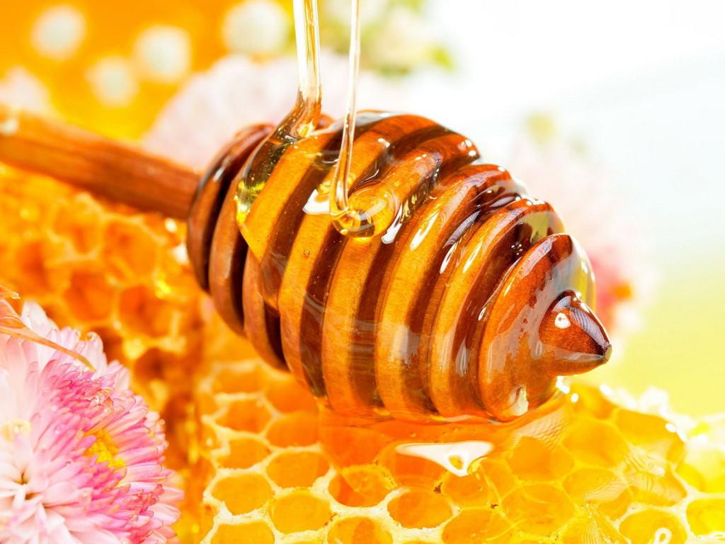 Корисні властивості меду!. їжа, корисні властивості, мед