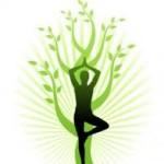 Нормативне підґрунтя формування здорового способу життя у світі. здоров'я, здоровий спосіб життя, зсж, конференція, науковці