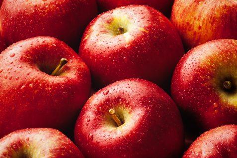 У вересні починається основний сезон яблук